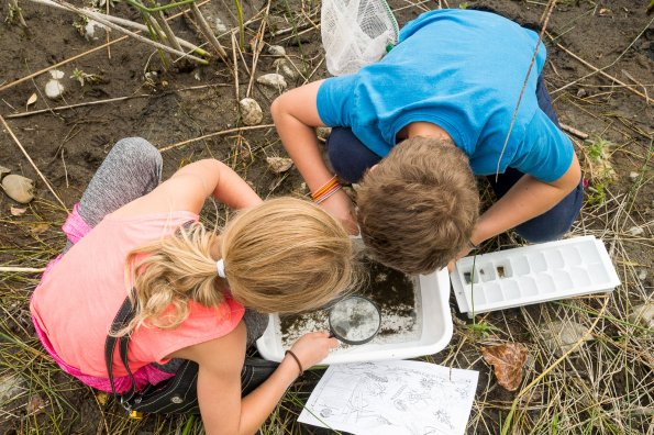 Why nature play is so good for kids, especially now